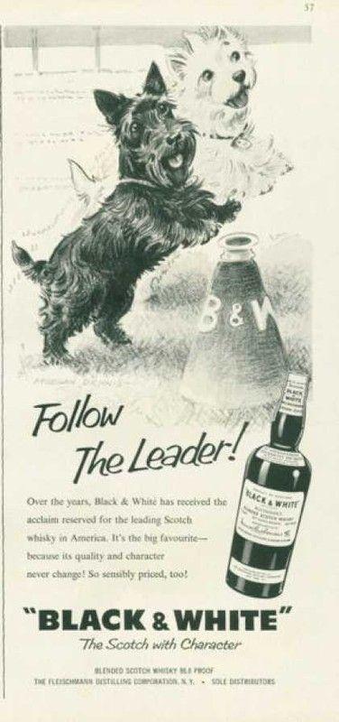 Pub BLACK & WHITE 1959