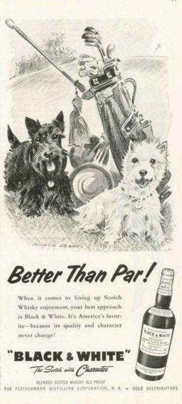 Pub BLACK & WHITE 1959.1